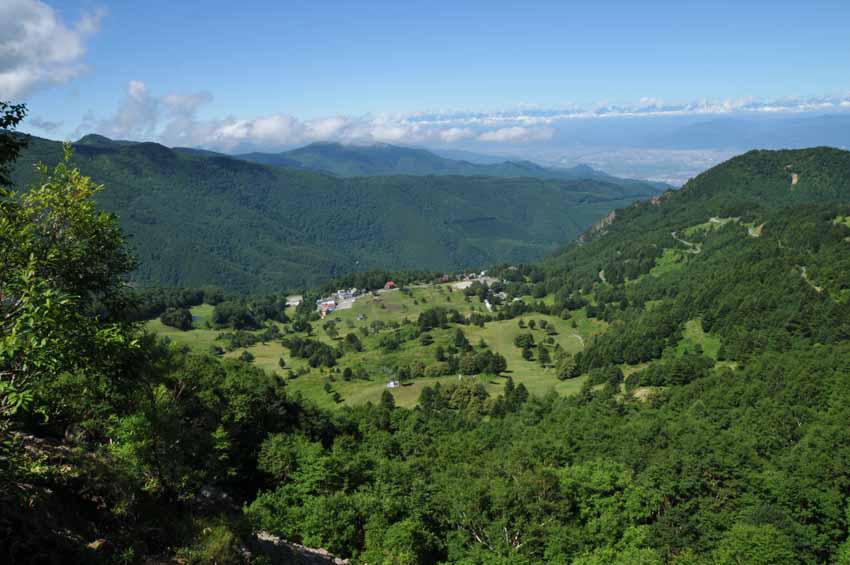 夏 遠くアルプスを望むやまぼく、笠岳から (2010年8月5日)